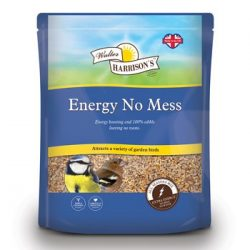 energy_no_mess