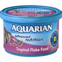 Aquarian Tropical