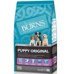 Burns Puppy