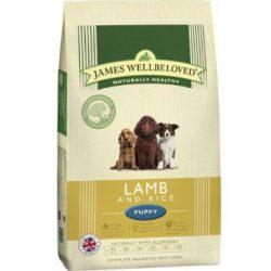 Jwb Puppy Lamb