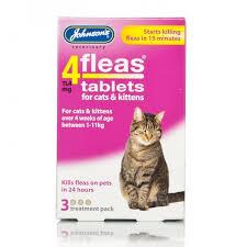 4 fleas cat 3