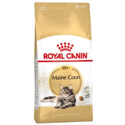 RC Maine Coon