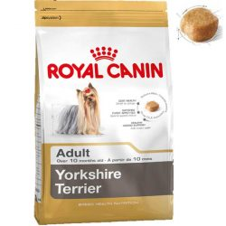 RC Yorkshire Terrier
