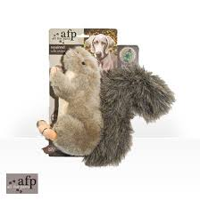 AFP Squirrel