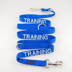 multi-training-lead