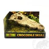 ET Crocodile Skull