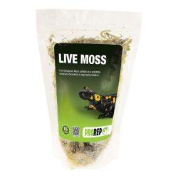 PR Live Moss