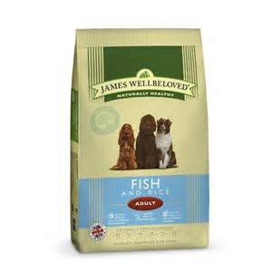 JWB Adult Fish
