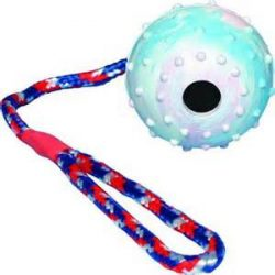 Ball on rope 2