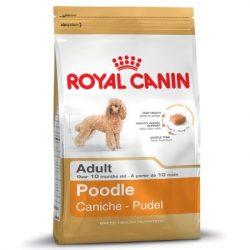 RC Poodle