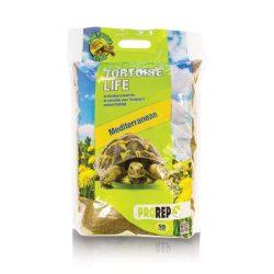 PR Tortoise Life